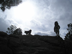 Hiker and dog in 3 Sisters